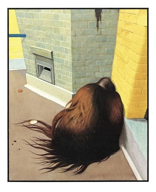 Imagen ilustración Zoológico